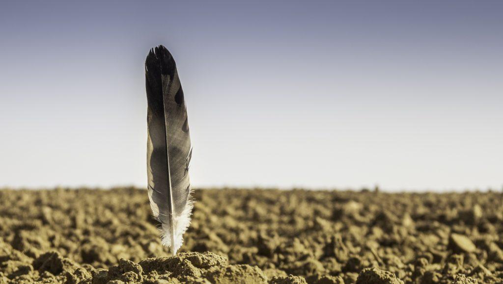 Bodengutachten – Tragfähigkeit des Bodens prüfen